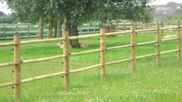 Photo d'une clôture bois Oxford en bois résineux